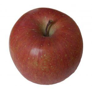 apple-13620042671fz